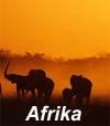 kmedien3601 Afrika Dschungel Getragener geheimnisvoller   Rhythmus