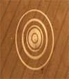 Circle Gemafreie Musik CD