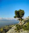 13) Kreta Reisefilm für Wartezimmer TV