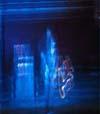Live Gemafreie Musik CD