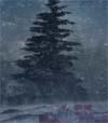 71) Weihnachten 2 für Wartezimmer TV