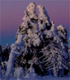 -.Winter 15 x klassische Musik zur Vertonung